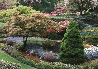 MN117R10 - Butchart Gardens
