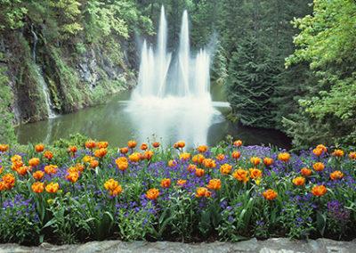 MN118R10 - Butchart Gardens Fountain