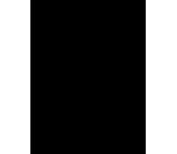 andoid light icon