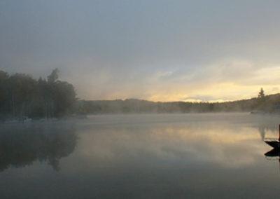 LC263R20 - Morning Mist