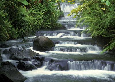 MN130R10 - Terraced Falls